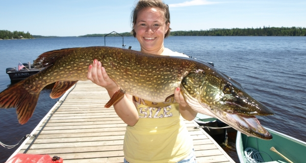 Spearfishing for northern pike debated at legislature for Pike fishing colorado